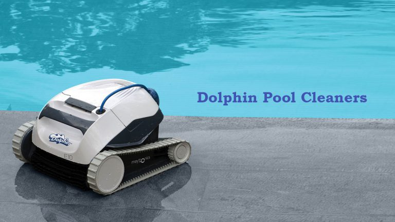 dolphin pool cleaners clear water ltd