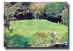 The site